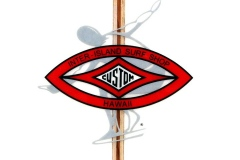iiss_m_logo_smaller1